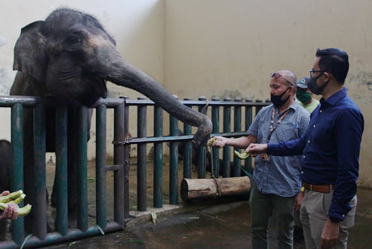 HERO Group Donasikan Pangan Untuk Satwa Taman Safari Indonesia