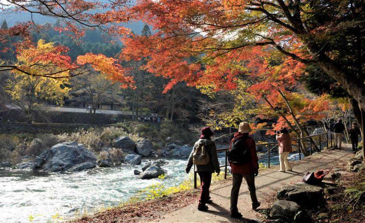 JNTO Luncurkan Program Japan Travel Specialist