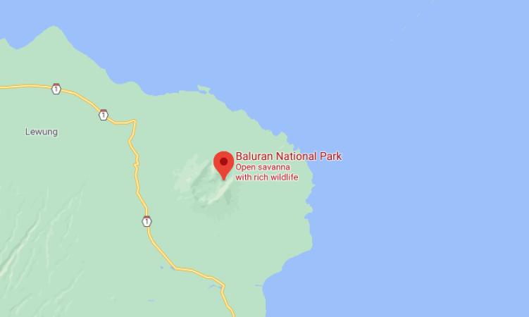 Kemenparekraf Kembangkan Pola Perjalanan Wisata di Taman Nasional Baluran