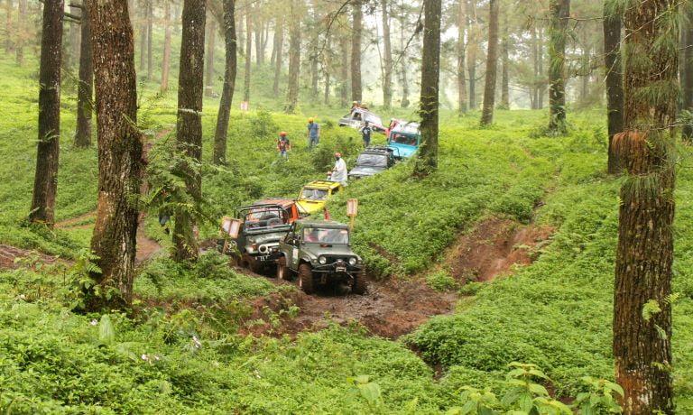 Menjelajah Hutan di Kaki Gunung Slamet Dengan Paket Offroad Batu Raden